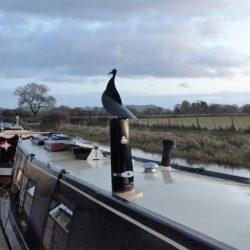 smokie-joe-narrowboat-chimney